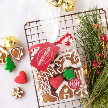 Christmas Gingerbread Pack